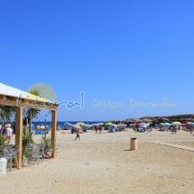 playa-sant-jordi-dalfama-22