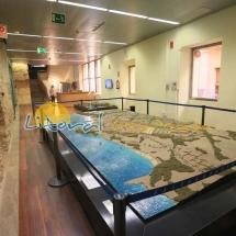 Vista de la sala donde está la maqueta romana de Tarragona