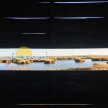 parque-natural-del-delta-del-ebro-180