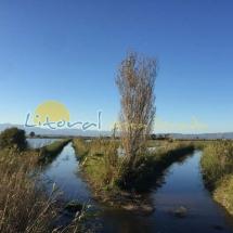 parque-natural-del-delta-del-ebro-191