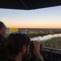 parque-natural-del-delta-del-ebro-238