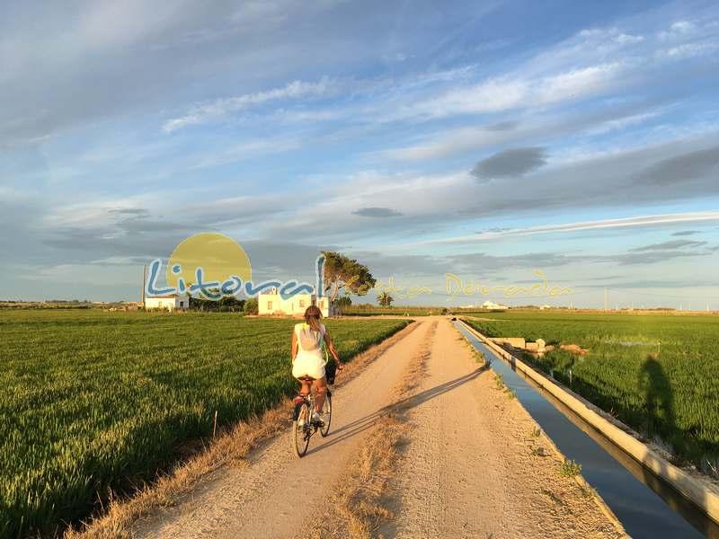 Delta del Ebro paseo bicicleta