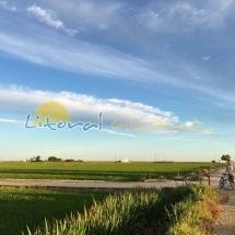 Delta del Ebro paseos en Bici