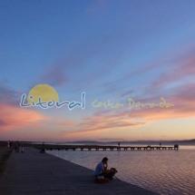 Playa del Trabucador Delta del Ebro