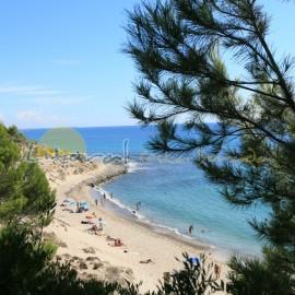 Nudismo en la Playa del Torn